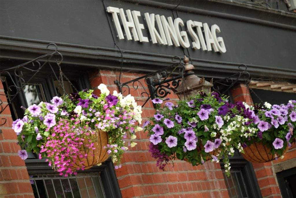 galery-king-stag-sign